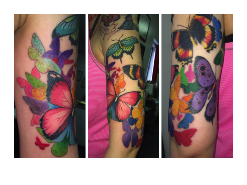 A collection of different butterflies - Beth Kennedy